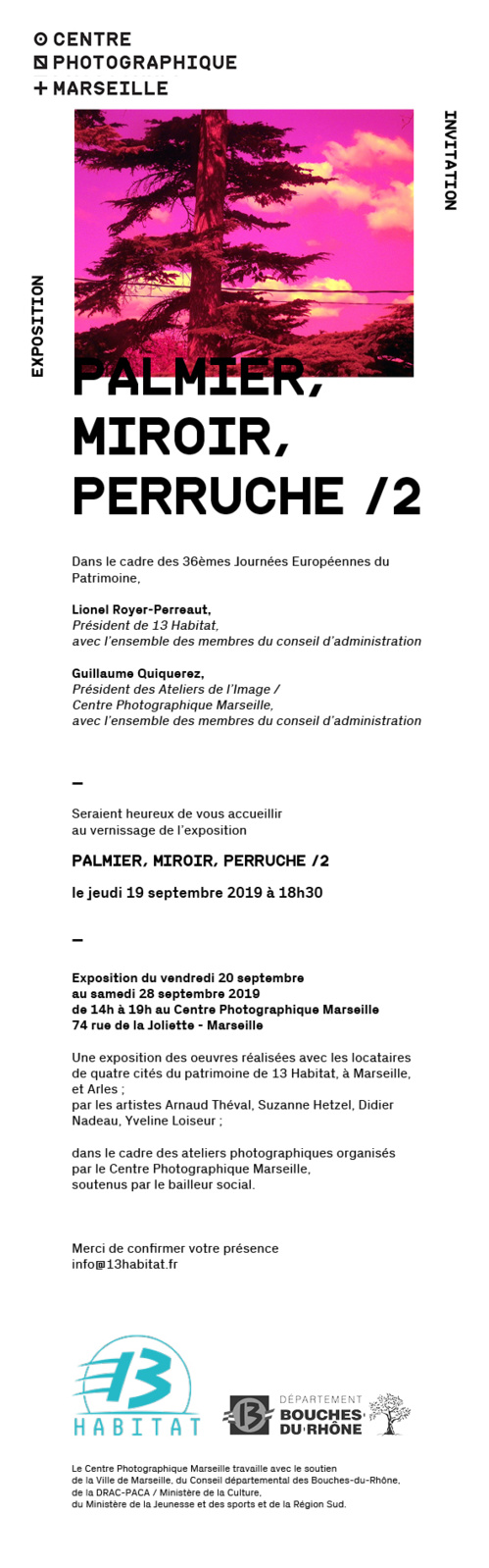 Palmier, Miroir, Perruche /2